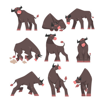 Black Horned Bull with Hoof and Muscular Neck Standing, Sleeping and Attacking Vector Set