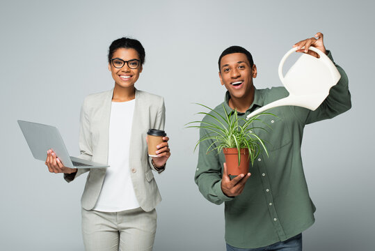 cheerful african american businesswoman holding coffee to go and laptop near gardener watering plant isolated on grey