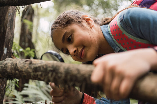 Ethnic girl with magnifier studying tree trunk in forest