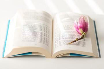 Obraz Książka i kwiat - fototapety do salonu