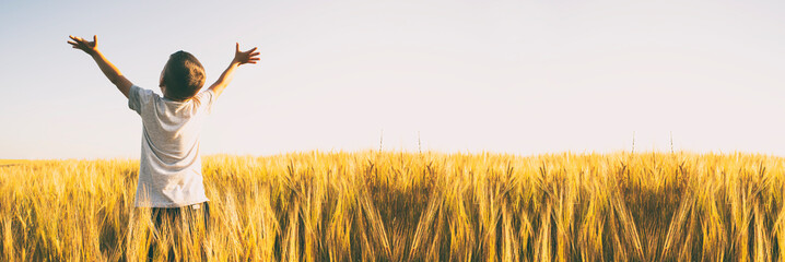 Obraz Boy raised his hands in the middle of the wheat field - fototapety do salonu
