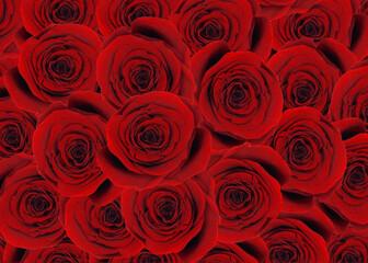 Obraz Bukiet róż - fototapety do salonu