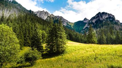 Obraz Krajobrazy - fototapety do salonu