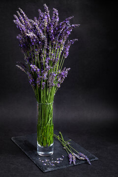Freshly cut lavender bouquet in a glass vase on a slate with black background