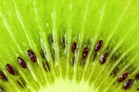 fresh green kiwi macro