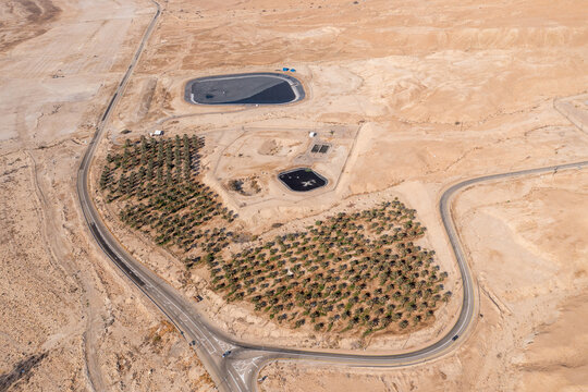 Desert oasis with green palms and water reservoir, Aerial image.
