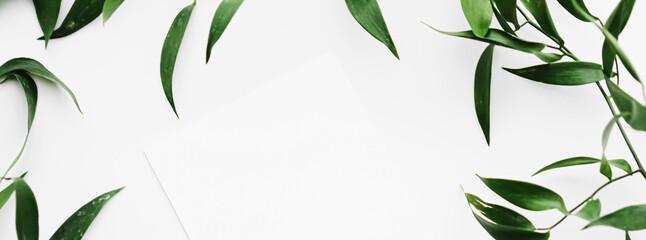 Blank white card, green leaves on white background as botanical frame flatlay, wedding invitation...