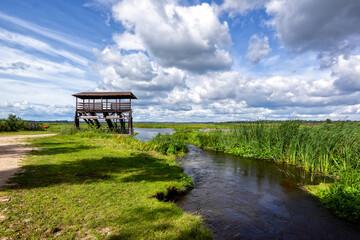 Obraz Przystań Waniewo, Narwiański Park Narodowy, Podlasie, Polska   - fototapety do salonu