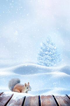 Winter New Year card. Fluffy squirrel in the snow. Copy space. Winter wonderland.