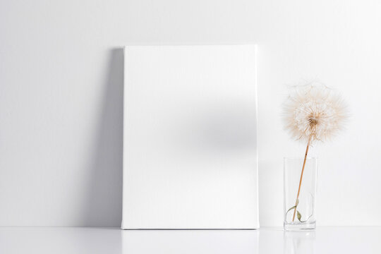 White canvas mockup with shadow on wall and dry dandelion decoration