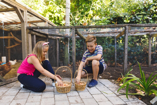 Smiling caucasian brother and sister collecting eggs from hen house in garden