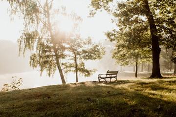Fototapeta ławka w parku, wschód słońca, promienie słoneczne obraz