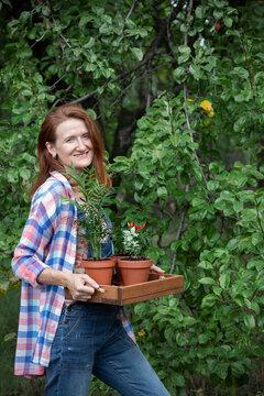flower transplant  in the garden