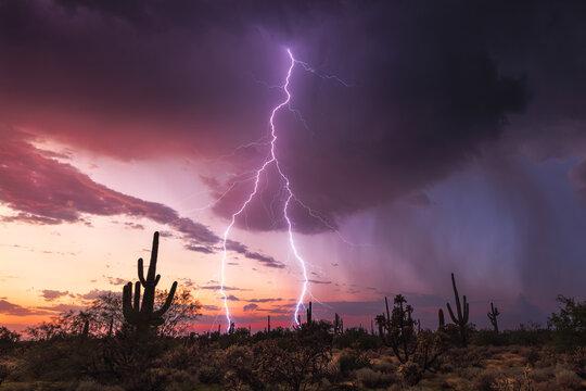 Sunset lightning storm in the desert