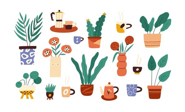Set of house plants in pots and flowers in vases. Indoor houseplants with leaf growing in flowerpots and planters. Home interior foliage decor. Flat vector illustration isolated on white background