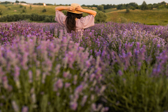 Back view portrait of brunette woman in a straw hat at the lavender field. Stylish female meeting sunset, walking at the park outdoor, enjoying fresh air, beautiful nature concept