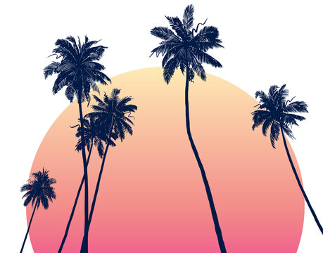 Sketchy illustration of palm trees at sunset. Hand-drawn rough texture. Vector background.