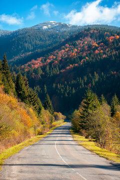 countryside road in mountains. beautiful autumn landscape on a bright sunny morning. trees in colorful foliage along the way. fluffy clouds on sky above the distant peak. travel back country concept