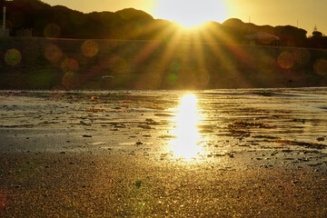 Rising sun with sunbeams on the seashore and bright flashes in the camera lens