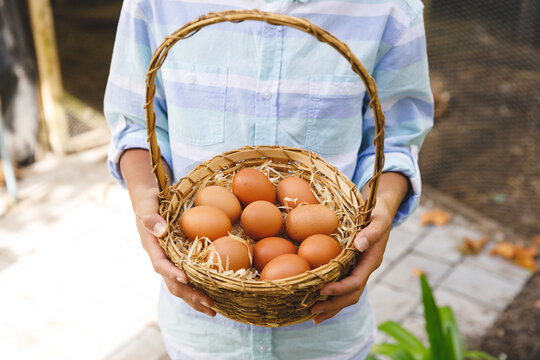 Midsection of asian boy holding basket, collecting eggs from hen house in garden