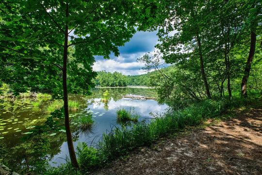 """Der """"Schulzenwasser""""-See am Wanderweg durch den brandenburgischen Naturpark Schlaubetal"""