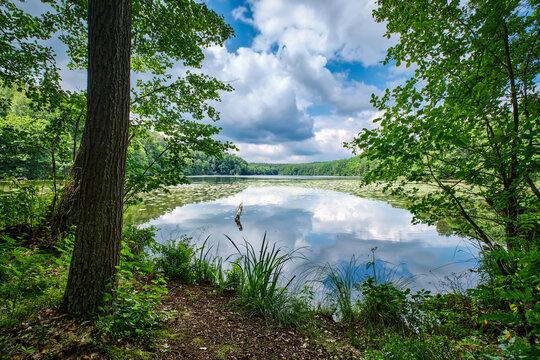 """Ruhe und Erholung: der """"Langesee"""" im brandenburgischen Naturpark Schlaubetal"""