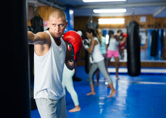 Obraz Portrait of concentrated young man in boxing gloves practicing powerful body punches on heavy punchbag during workout in gym - fototapety do salonu