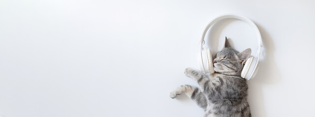 Obraz Happy grey cat with white wireless headphones lying and enjoys on white table. Cozy home background with happy pet. - fototapety do salonu