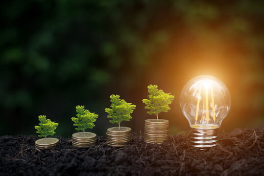 Big tree on money and lightbulb with light on soil and green nature background. Saving money for the future, education, investment and retirement. The tree represents the growth of saving money.