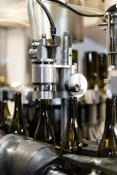 White wine bottling