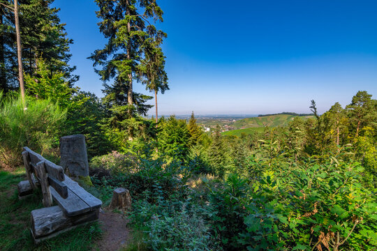 A beautiful view with a bench out of the Black Forest down into the Durbach Valley