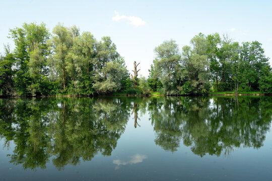 Donaurieder See