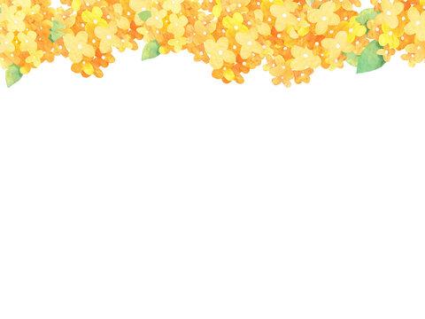 黄色い花壁紙、背景