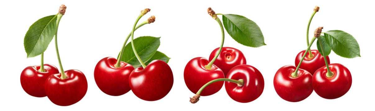 Sweet cherry bunch set isolated on white background