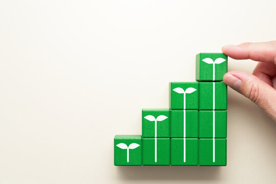 Growth and sustainability. Illustration of growing seedling. Stacking green wood blocks.