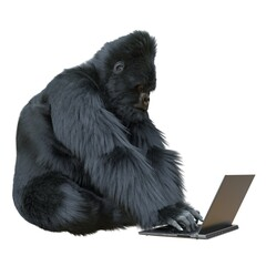 Gorilla with laptop concept 3d illustration isolated on white