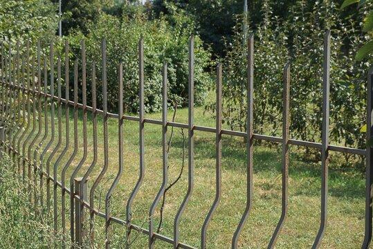 row black sharp steel fence bars against the background of green vegetation