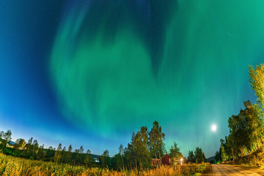 Northern Lights above small village street in Swedish Mountains. One of the best place to see the Aurora Borealis, green lights all over the sky.