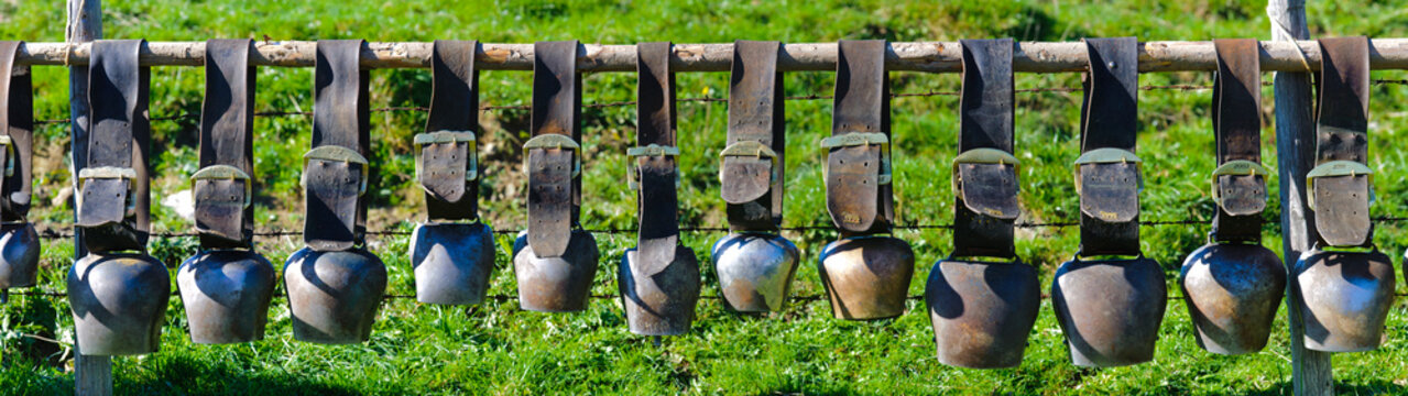 group of cow bells in line on fence in Bavaria