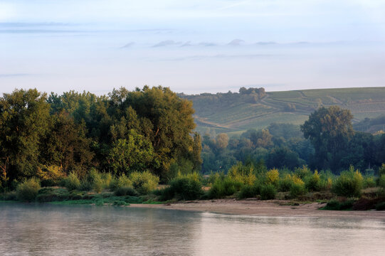 Loire river and Pouilly vineyard