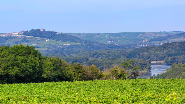 Pouilly vineyard and Sancerre hill in the Loire valley