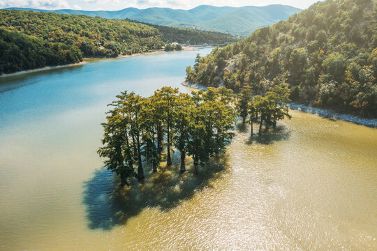 Cypress Lake Sukko aerial view with green trees standing in lake water in Anapa mountains, Russia.