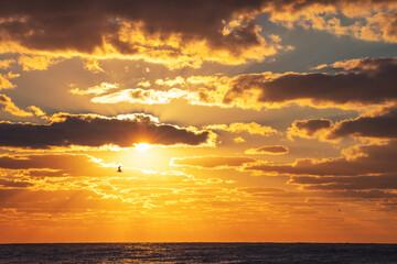 Obraz Beautiful sunrise over the sea - fototapety do salonu