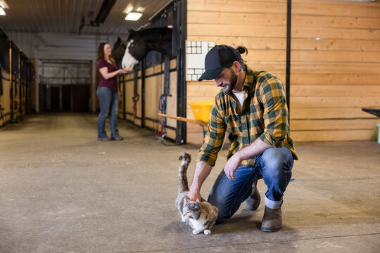Male farmer petting cat in horse stable