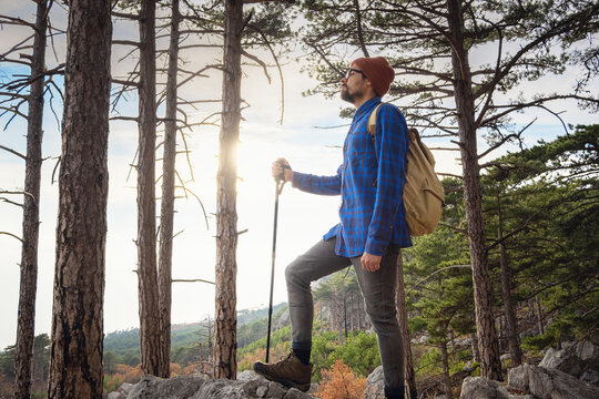 the concept of discovery and hiking, nature and freedom. Young man standing on top of a cliff in summer mountains among pine forest and enjoying nature view