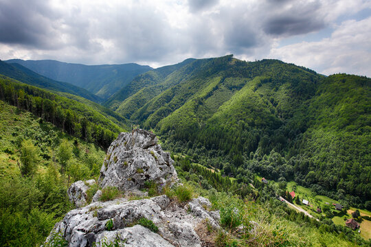 Mountain panorama landscape with green forest