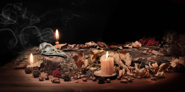 Altar of forest witch. Samhain pagan ritual. Birds skull, ashberry, acorns, dry herbs, pine bark among burning candles in the dark, low key, selected focus. Copy space.