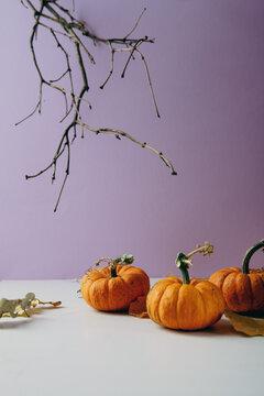 Thankgiving or Halloween concept small oranges pumpkins