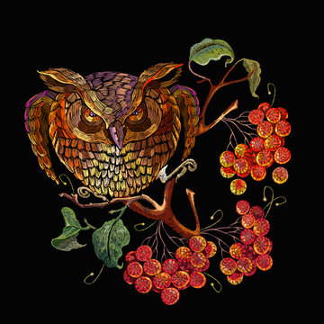 Embroidery, owl and red branches of mountain ash berry. Fashion template for clothes, t-shirt design. Autumn fairy tale art