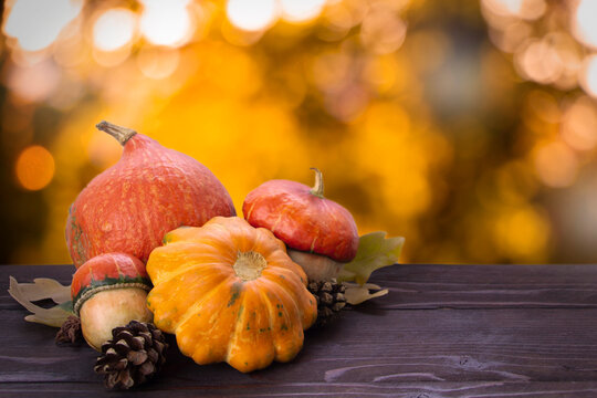 Autumn pumpkins background on wooden brown board., dephocused bokeh background. Thanksgiving and Halloween template